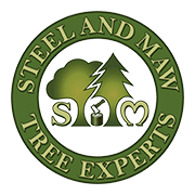Health & safety, Tree Surgeon in York, Steel & Maw